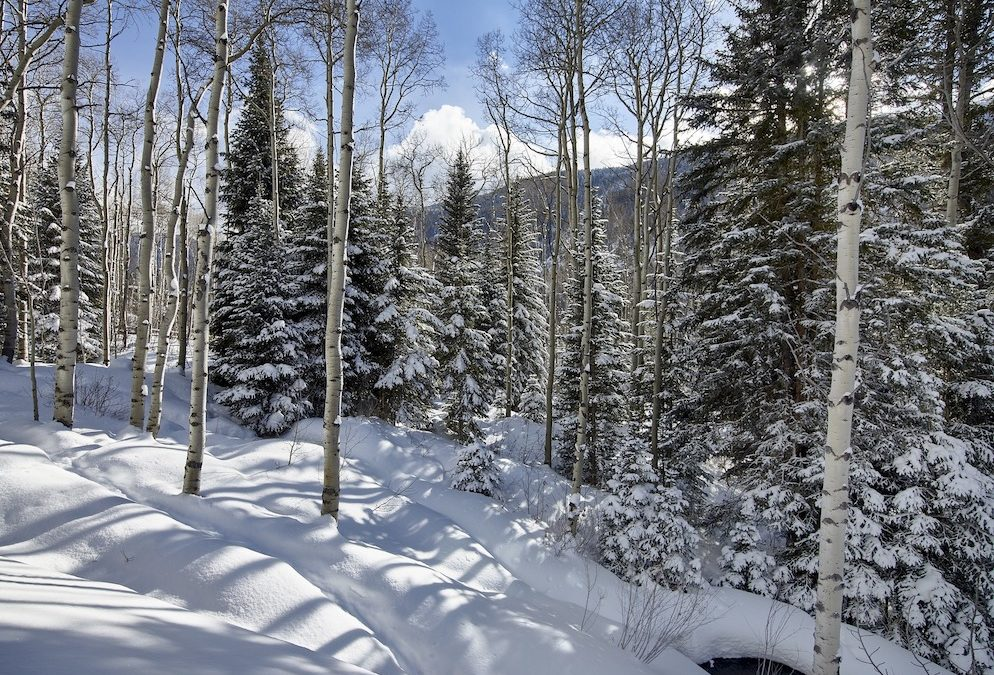 Things To Consider For A Last Minute Aspen Trip